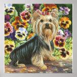 Yorkie Yorkshire Terrier in the Pansies Print