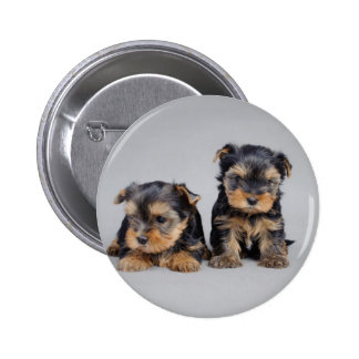 Yorkies Button