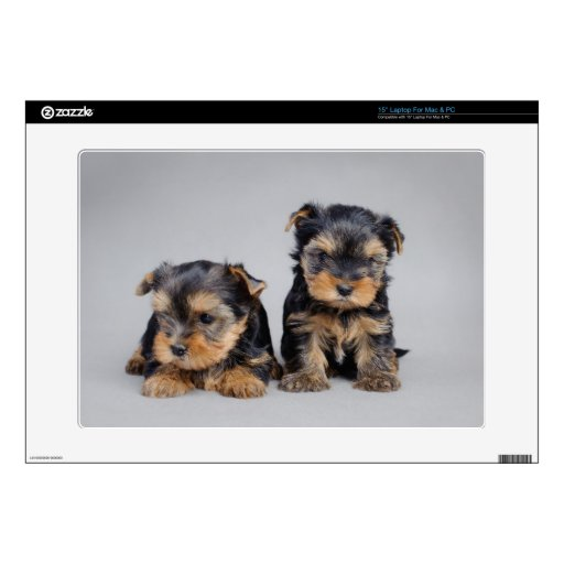 Yorkies Decal For Laptop