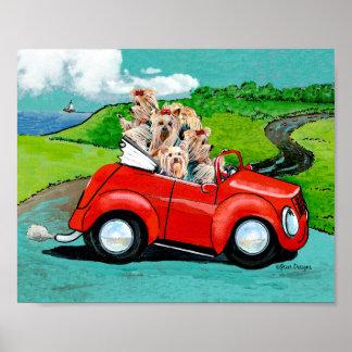 Yorkies en la impresión convertible roja del arte  póster