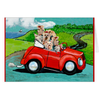 Yorkies en tarjeta convertible roja