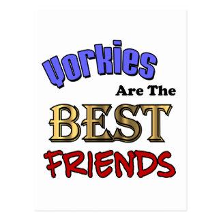 Yorkies es los mejores amigos