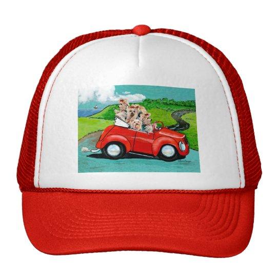 Yorkies in Red Convertible Trucker Hat