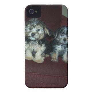 Yorkies iPhone 4 Case-Mate Case