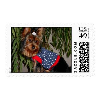 Yorkies of America Postage
