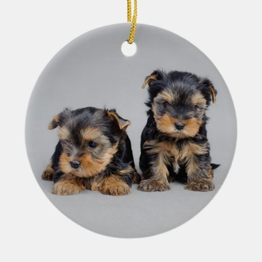 Yorkies Ornaments