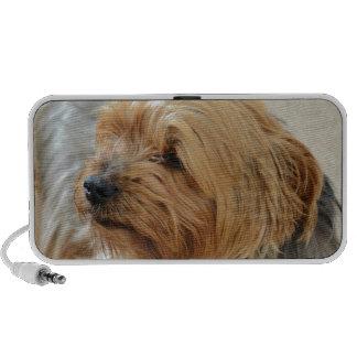 Yorkkshire Terrier Jake iPod Altavoces