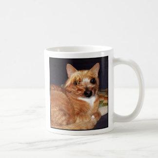 Yorkshire cat mug #1