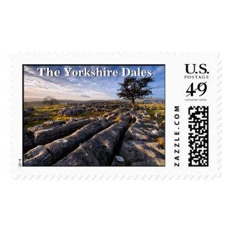 Yorkshire Dales Postage Stamp