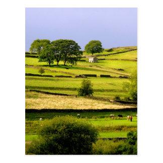 Yorkshire landscape postcard
