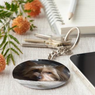 yorkshire / silky terrier keychain