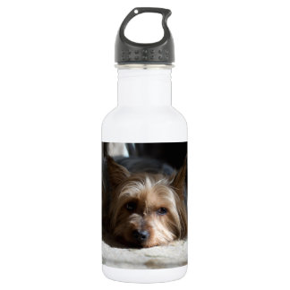 yorkshire / Silky water bottle - many styles