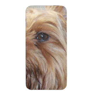 yorkshire-terrier-12.jpg iPhone 5 pouch