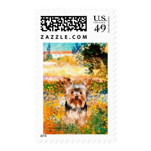 Yorkshire Terrier 17 - Garden (VG) Postage Stamp