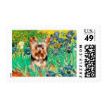 Yorkshire Terrier 17 - Irises Postage Stamp