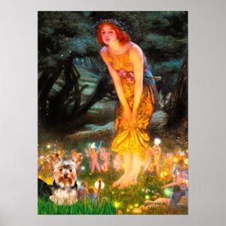Yorkshire Terrier 17 - MidEve Print