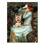 Yorkshire Terrier 17 - Ophelia Seated Postcards