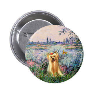 Yorkshire Terrier 1 - By the Seine Pins