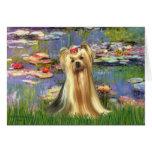 Yorkshire Terrier 1 - lirios 2 Tarjeta De Felicitación