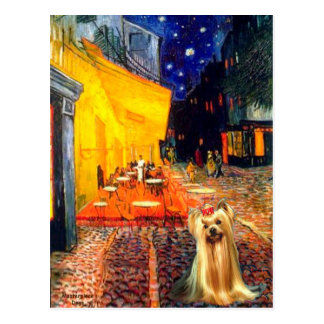 Yorkshire Terrier 1 - Terrace Cafe Postcard