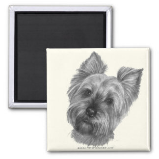 Yorkshire Terrier 2 Inch Square Magnet