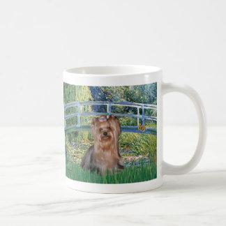 Yorkshire Terrier 4 - puente Taza Clásica