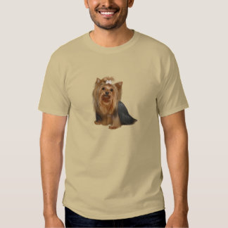 Yorkshire Terrier (7) Playeras