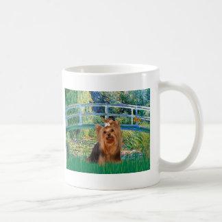 Yorkshire Terrier 7 - puente Taza Clásica