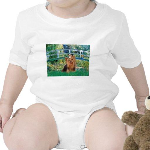 Yorkshire Terrier 7 - puente Traje De Bebé