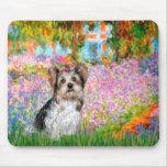 Yorkshire Terrier (Biewer) - jardín Mouse Pads
