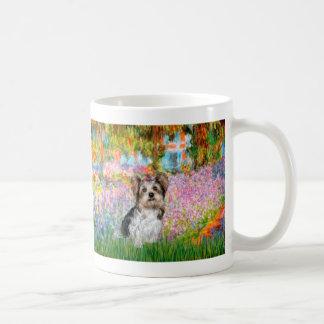 Yorkshire Terrier (Biewer) - jardín Taza