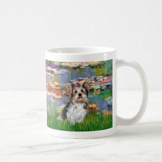 Yorkshire Terrier (Biewer) - lirios 2 Taza