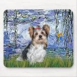 Yorkshire Terrier (Biewer) - lirios 6 Mouse Pad