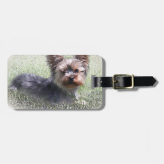 Yorkshire Terrier Buddy multiple products selected Bag Tag