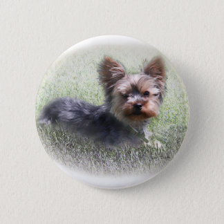 Yorkshire Terrier Buddy multiple products selected Button