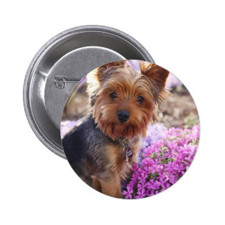 Yorkshire Terrier Pins