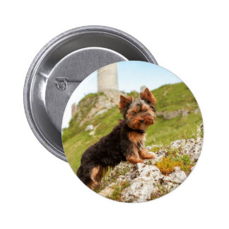 Yorkshire Terrier Pinback Buttons
