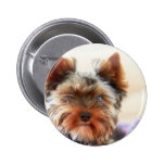 Yorkshire Terrier Buttons
