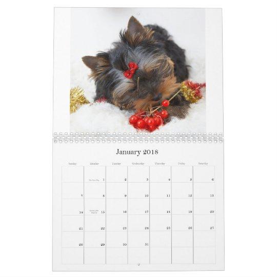 Yorkshire Terrier Calendar