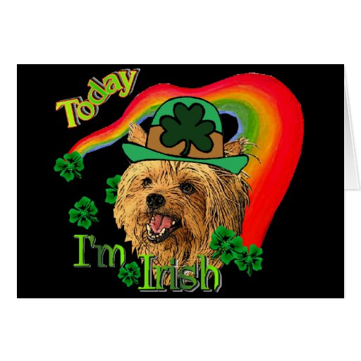 Yorkshire Terrier de St Patrick Felicitaciones