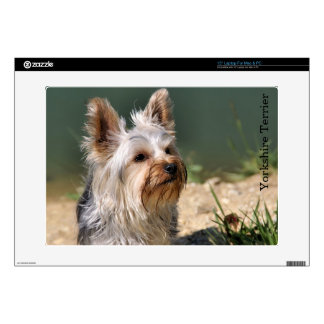 Yorkshire Terrier Decals For Laptops