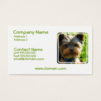 Yorkshire Terrier Dog Business Card