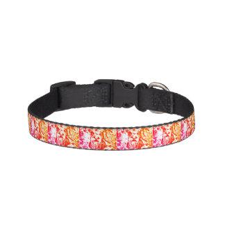 Yorkshire Terrier Dog Collar