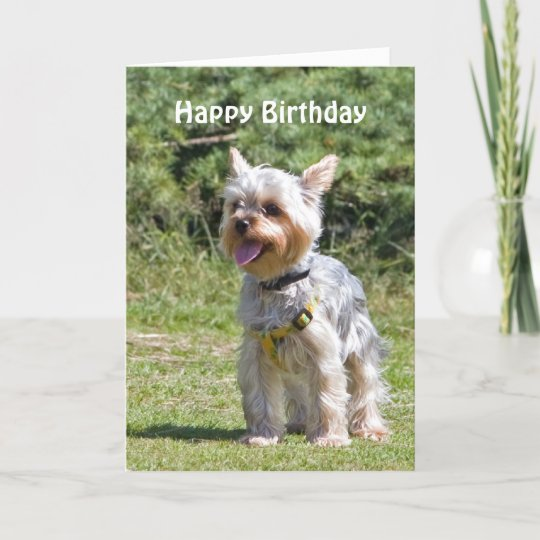 Handmade Personalised Yorkshire Terrier Birthday Card