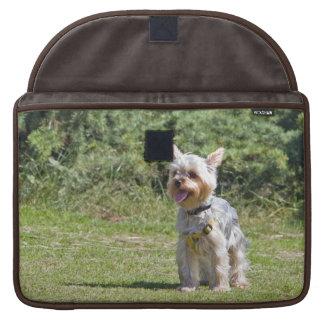 Yorkshire Terrier dog, cute macbook air sleeve Sleeve For MacBooks