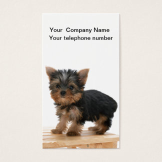 Yorkshire Terrier dog photo business card