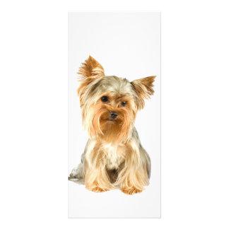 Yorkshire Terrier dog photo cute custom rack card