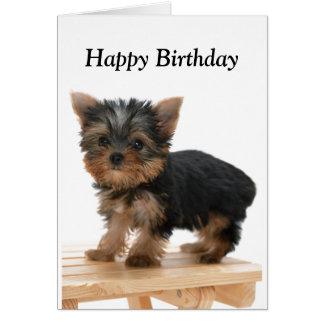 Yorkshire Terrier dog puppy custom birthday card