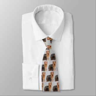 Yorkshire Terrier Dog Tie