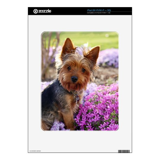 Yorkshire Terrier dog yorkie cute beautiful photo iPad Skin
